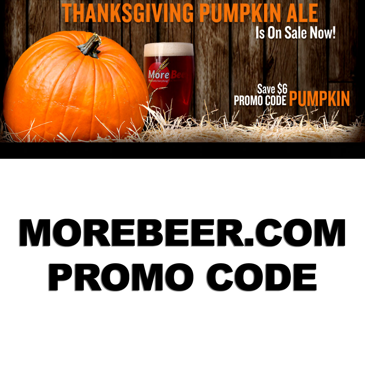MoreBeer Save $6 On A More Beer Pumpkin Ale Beer Kit With This MoreBeer.com Promo Code Coupon Code