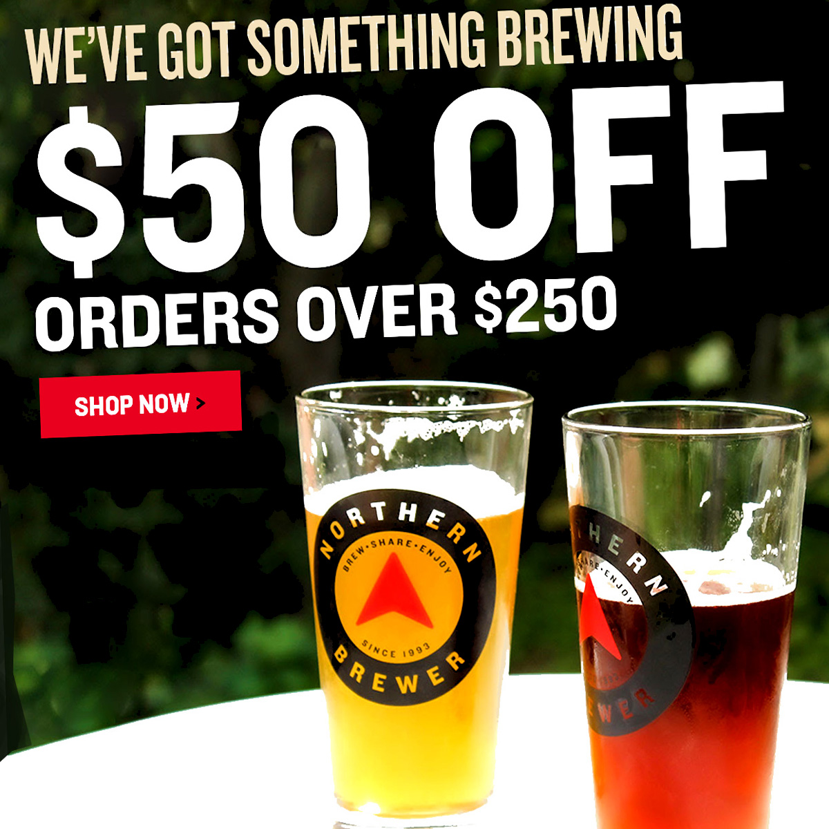 Northern Brewer Save $50 on a $250 Purchase at Northern Brewer with this NorthernBrewer.com Promo Code Coupon Code