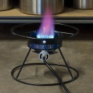 Spend $125, Get a Free Dark Star Burner Coupon Code